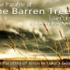 The Parable of the Barren Tree – Luke 13:1-9