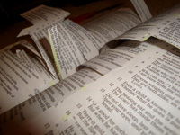Bible_Cut_Up