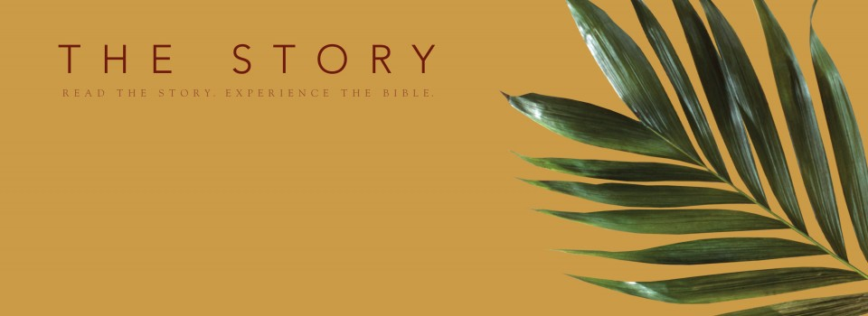 Reading The Bible as Story (Part 3 of 10 ways we must read the Bible differently)