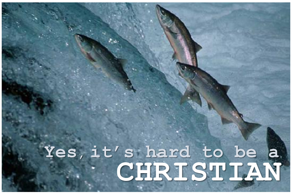 Yes. It's hard to be a Christian (pt. 1).