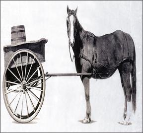 cart_horse
