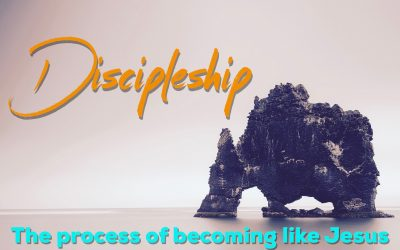 Discipleship: The Process of Becoming like Jesus.