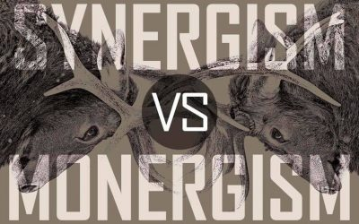 Monergism or Synergism — Which do you believe?